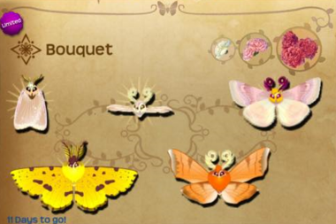 Bouquet Set§Flutterpedia