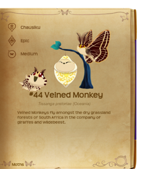 Veined Monkey§Flutterpedia
