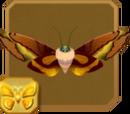 Enigmatic Rusty Goat Moth
