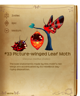 Picture-winged Leaf Moth§Flutterpedia