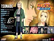 Naruto-characters-profiles-tsunade360-30617475-500-375