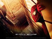 Spider-Man-spider-man-20067346-1024-768