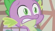 Spike being surprised