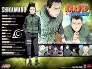 Naruto-characters-profiles-tsunade360-30617482-500-375