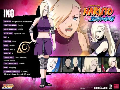 Naruto Characters Profiles Tsunade360 30617483 500 375