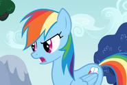 Rainbow Dash arguing