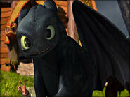 Toothless in Berk for the first time