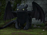 Toothless standing and looking