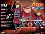 Naruto-characters-profiles-tsunade360-30617473-500-375