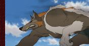 WolfChimeraFMASSOM