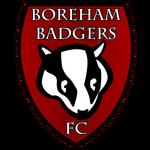 BorehamBadgersFC