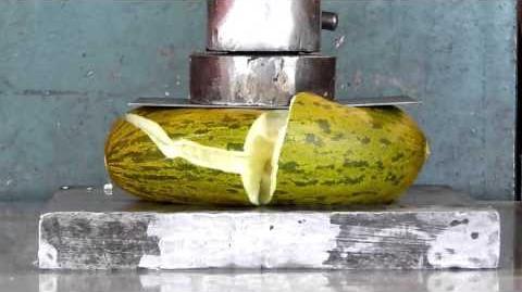 Prensa Hidráulica Melon Hydraulic Press Watermelon