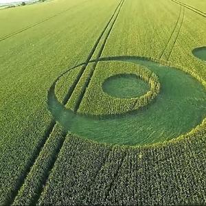 Crop circle.png