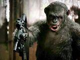 Human/Ape Hybrid Super Soldiers