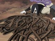 Myriad Snake Net Formation