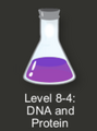 Intro_Puzzles/DNA_and_Protein