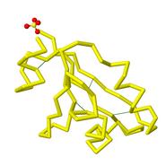 1KP6 disulfides