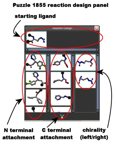 Puzzle 1855 Reaction Design Panel Components