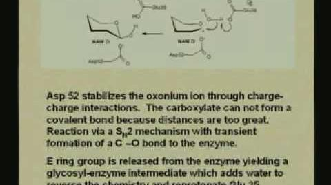 Lecture - 10 Enzyme Mechanisms I