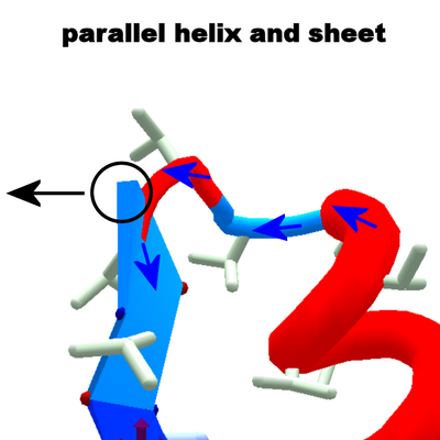 H-L-E parallel