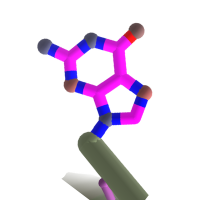 Guanine.dnaintro