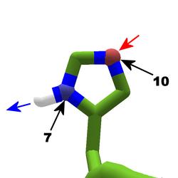 Histidine.tautomer2.bonding