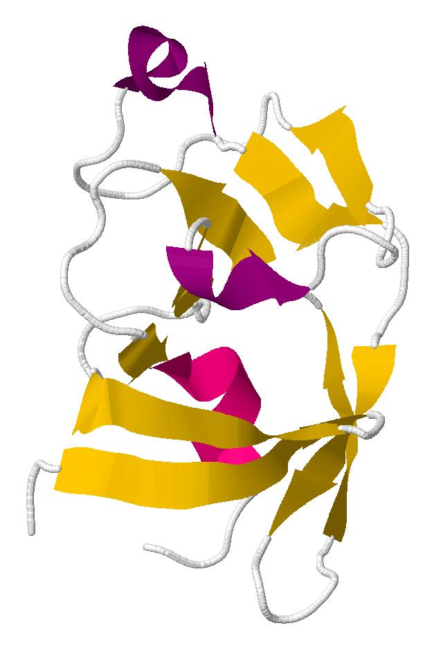 Mason-Pfizer Monkey Virus | Foldit Wiki | FANDOM powered by