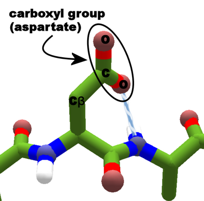 Carboxyl group aspartate