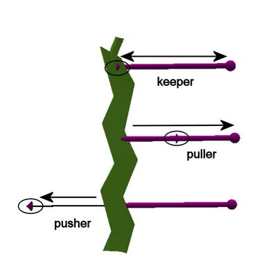 Spaceband pusher puller keeper