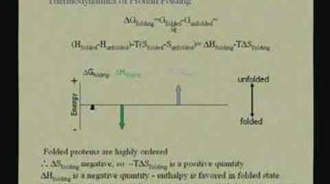 Lecture - 6 Protein Structure 4