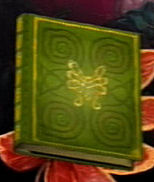 Item picture book Faery Realm
