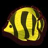 Souvenir-Fish Specimen