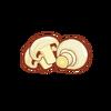 Ingredient-Mushroom