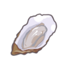 Ingredient-Oyster