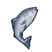 Ingredient-Salmon