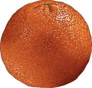 Fruit14