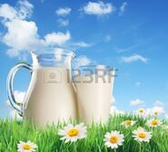 10978555-milk-jug-and-glass-on-the-grass-with-chamomiles-on-a-background-of-the-summer-sky-with-clouds