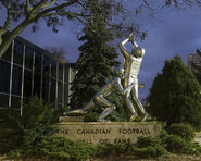 Statute touchdown cfhof