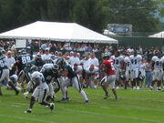 Donovan McNabb Eagles Training Camp 2008