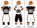 2009 Cleveland Browns season