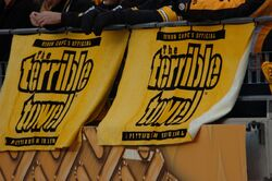 Terrible Towel 2006