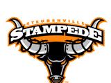 Steubenville Stampede