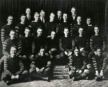 Chicago Cardinals 1920