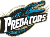 Port Huron Predators