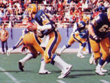 1979 Pittsburgh Panthers football team