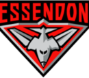 Team:Essendon (AFL)