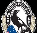 Team:Collingwood (AFL)