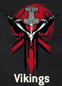 Vikings Accueil