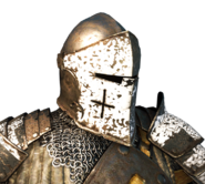 Warden helm and shoulders