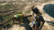 Honor - Warden defeated